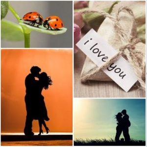 buscar pareja para relación seria y estable